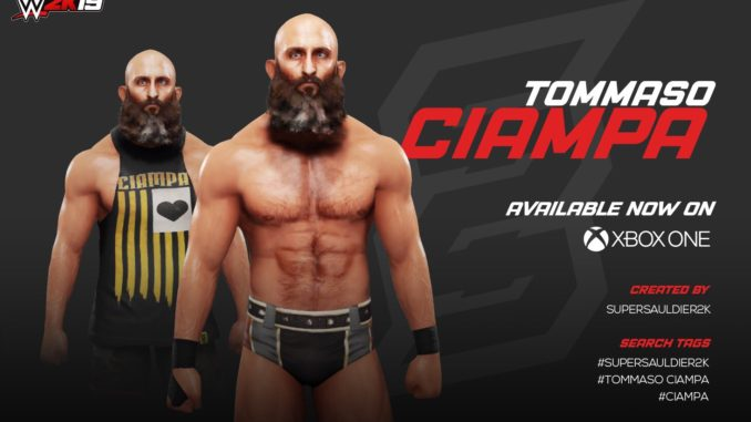 The Top 10 Best WWE 2K19 CAWs -